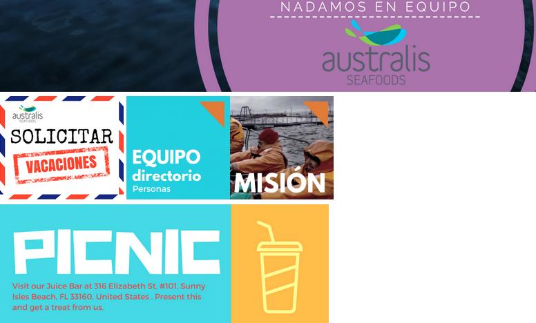Diseño Gráfico para Australis Seafoods – Puerto Varas