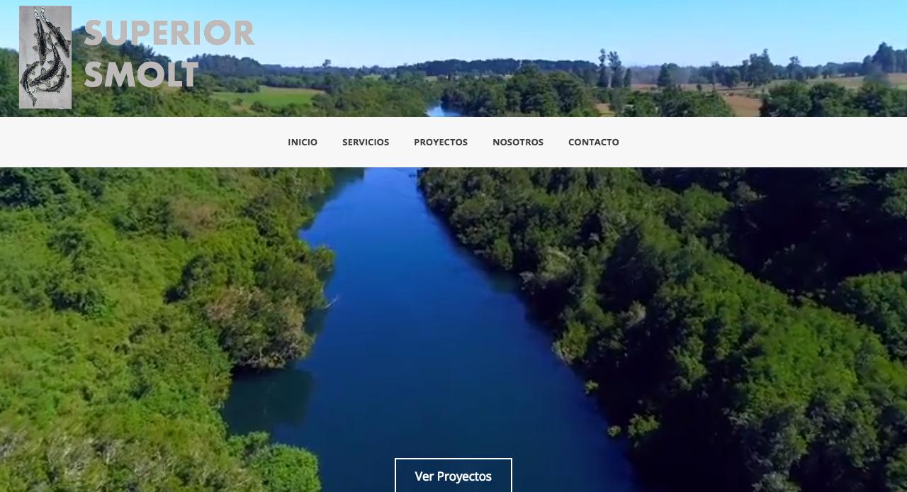 diseño_web_osorno_puerto_montt4 Diseño web Puerto Varas y Puerto Montt