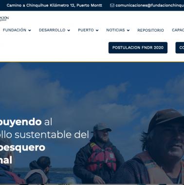 web_puerto_varas-378x380 Diseño web Puerto Varas y Puerto Montt