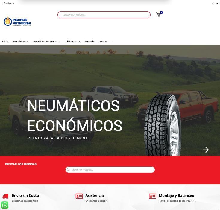 13web_puerto_varas- Diseño web Puerto Varas y Puerto Montt