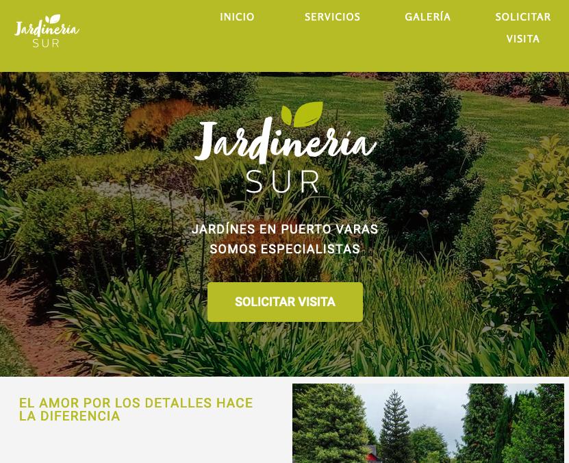 sitio_web_puerto_varas Diseño web Puerto Varas y Puerto Montt